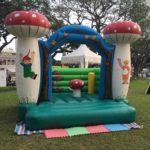 Mushroom Bouncer